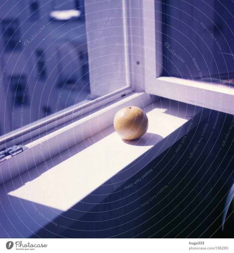 Still Life3 blau Stadt Haus gelb Fenster Gefühle hell Frucht Lebensmittel Ernährung fantastisch violett Stillleben Bioprodukte exotisch Fensterscheibe