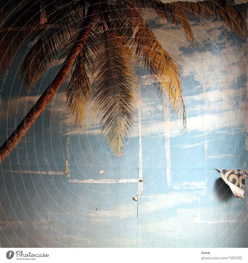 Risse im Paradies Wand Mauer träumen Design