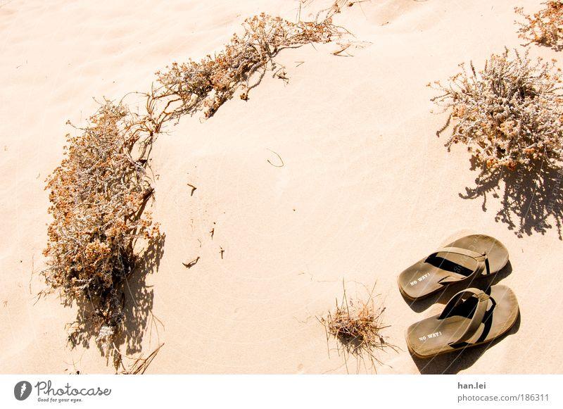 No Way Wellness Leben Wohlgefühl Erholung Ferne Sommer Sommerurlaub Strand Meer Natur Pflanze Schönes Wetter Dürre Gras Sträucher Bekleidung Schuhe Flipflops
