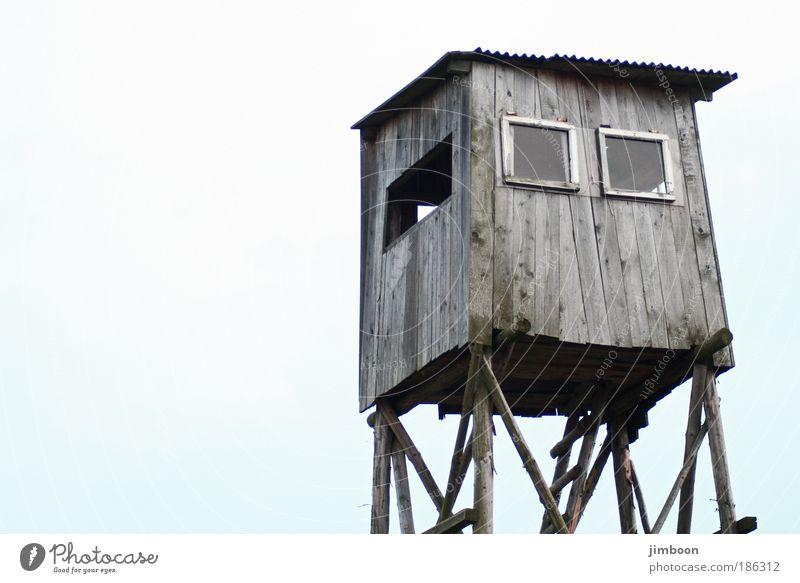 Hochsitz Natur alt Himmel blau Winter ruhig schwarz Einsamkeit Erholung Herbst oben Fenster Holz grau träumen warten