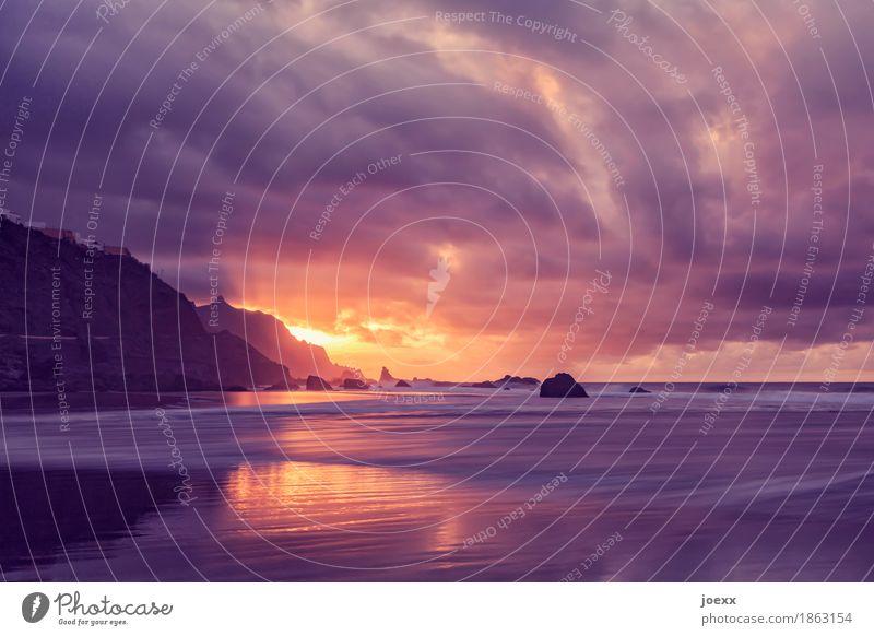 Am Ende des Tages Sommer Sommerurlaub Sonne Strand Wellen Landschaft Himmel Wolken Horizont Sonnenaufgang Sonnenuntergang Sonnenlicht Schönes Wetter Felsen