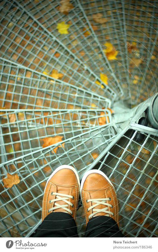Herbstblick II Mensch Pflanze Baum Blatt ruhig Leben Traurigkeit Herbst Wege & Pfade Zeit Mode Fuß träumen Treppe Angst frei