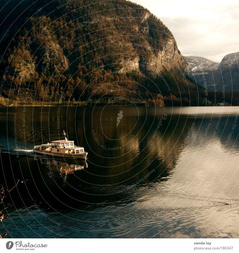 Hallstatt I Natur Wasser Himmel Wald kalt Herbst Berge u. Gebirge See Landschaft braun Küste Umwelt Felsen Hügel Wasserfahrzeug Europa