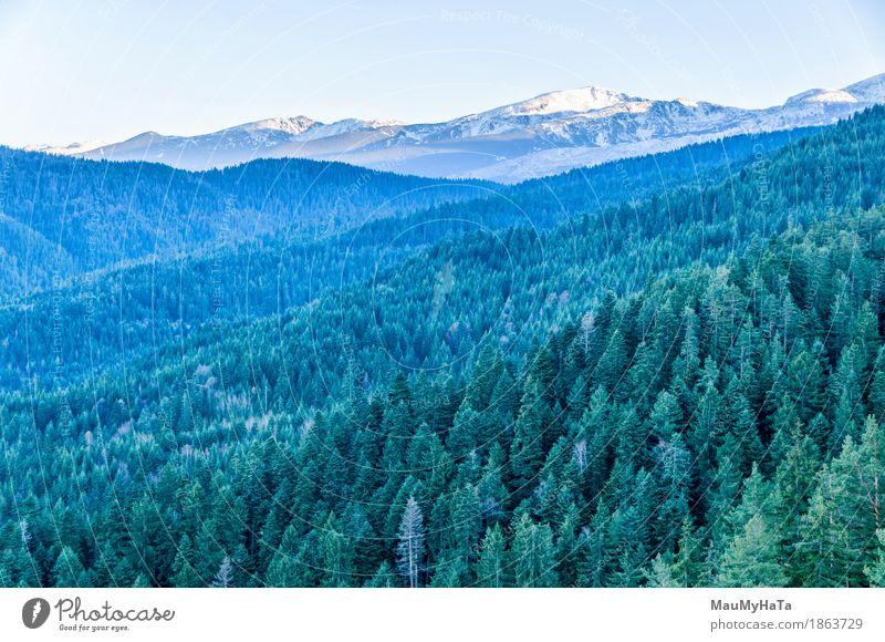 Himmel Natur Pflanze Sommer Baum Landschaft Winter Wald Berge u. Gebirge Gefühle Frühling Herbst Erfolg Klima Schönes Wetter Abenteuer
