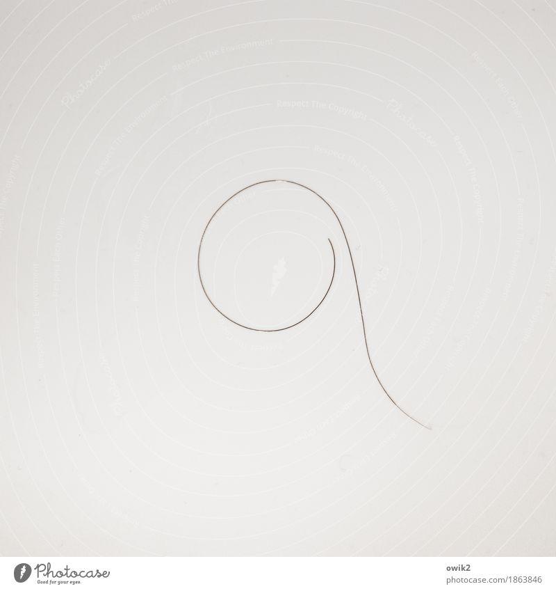 Ein Hauch, ein Flüstern Haare & Frisuren 1 dünn glänzend hell rund ruhig bescheiden elegant einzigartig Schweben leicht gekrümmt verloren Einsamkeit leer