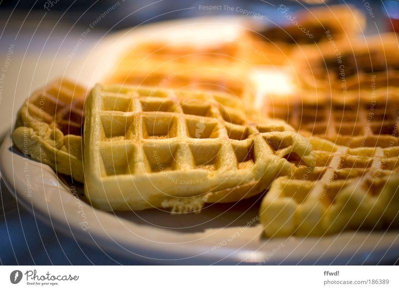 Waffeltag Ernährung braun Lebensmittel süß Kochen & Garen & Backen lecker Appetit & Hunger Duft Frühstück Süßwaren Teller Konzepte & Themen Backwaren