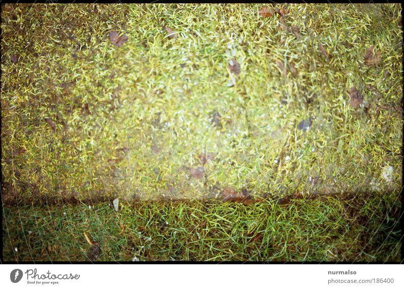 ich weis ooch nich 1 Natur Umwelt Herbst Kunst Lifestyle liegen Freizeit & Hobby verrückt Lebensfreude einzigartig Zeichen Rasen eckig Langeweile Fragen