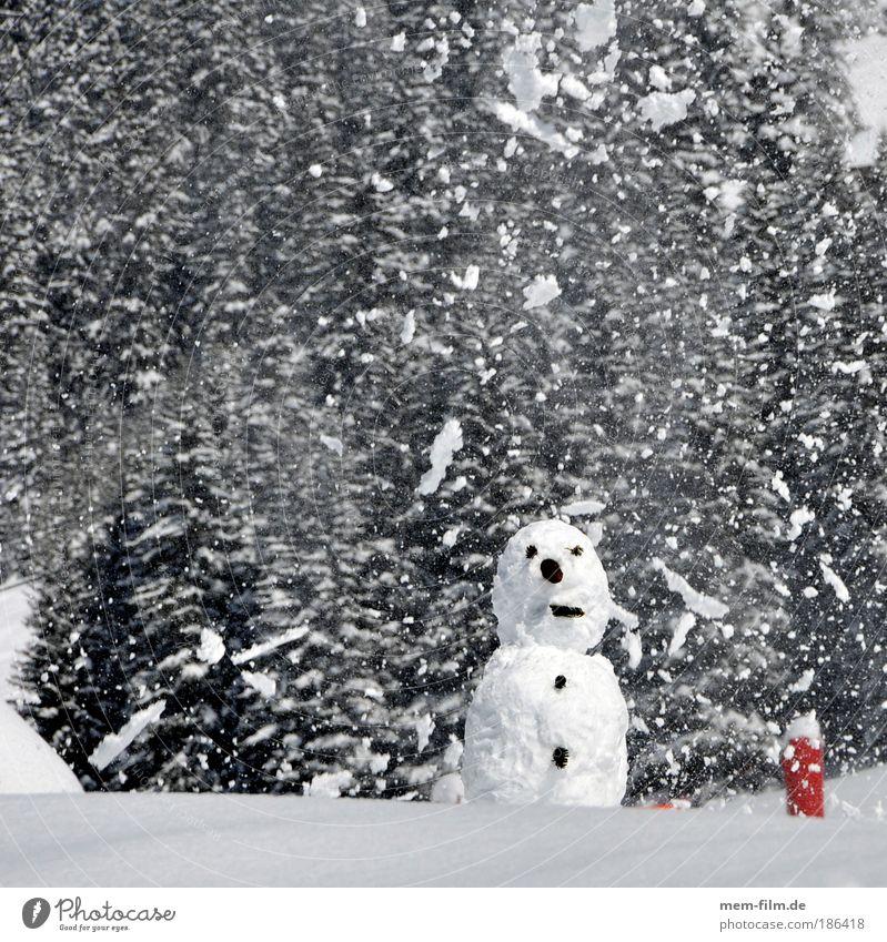 schnee, mann! Weihnachten & Advent Winter Schneemann kalt Schneefall Mann scheien Kinderspiel Berge u. Gebirge Schweiz Österreich Ferien & Urlaub & Reisen
