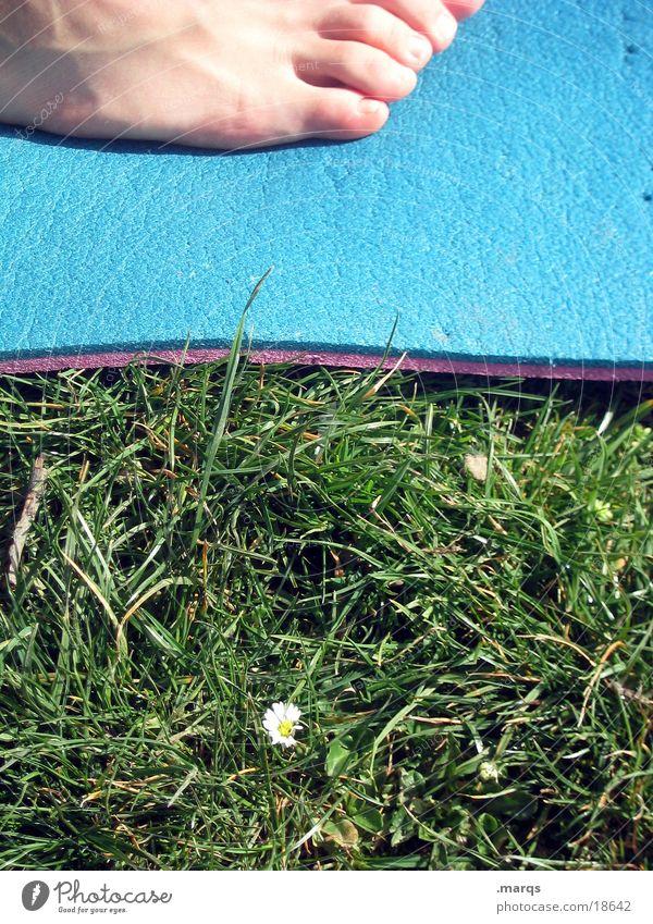 Frühlingserwachen Gras Wiese Gänseblümchen Blume Matten Zehen 2008 Isomatte Fuß Detailaufnahme marqs Barfuß