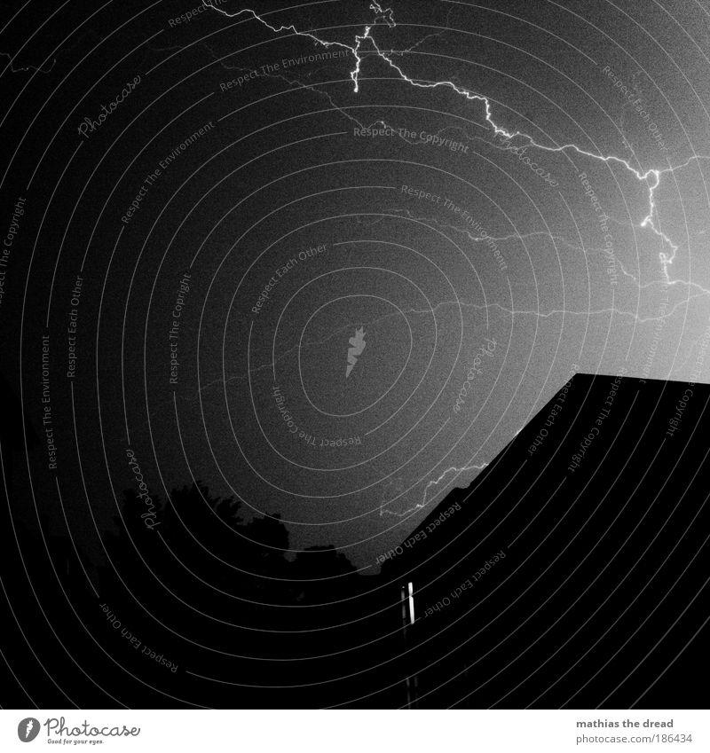 LICHTBOGEN Natur Stadt Baum dunkel Fenster Umwelt Gebäude hell Regen Wind Angst Fassade außergewöhnlich gefährlich Elektrizität Urelemente