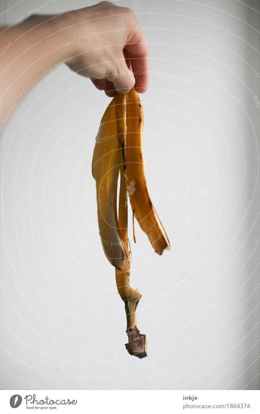 foodfoto (outtake) Frucht Banane Bananenschale Hülle Ernährung Bioprodukte Vegetarische Ernährung Hand festhalten Vor hellem Hintergrund aufgegessen einfach