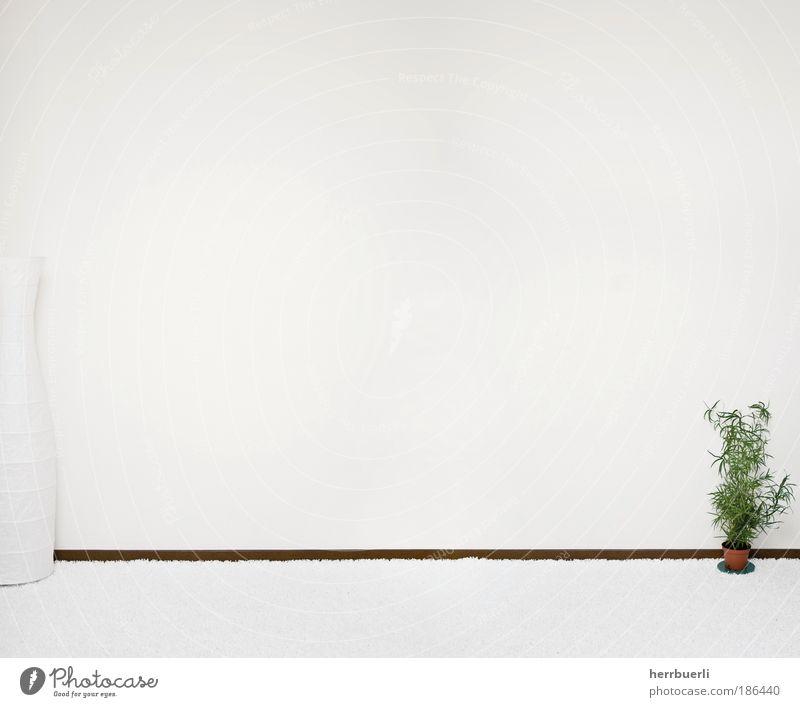 Zimmerwand ruhig Erholung Wand Stil Mauer Stein Stimmung Design ästhetisch Unendlichkeit knien Selbstbeherrschung