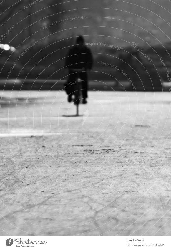 Wintersport Freizeit & Hobby Fahrrad Mensch maskulin Mann Erwachsene 1 Erde schlechtes Wetter Park Menschenleer Fahrradfahren Wege & Pfade Jacke Mütze Wasser