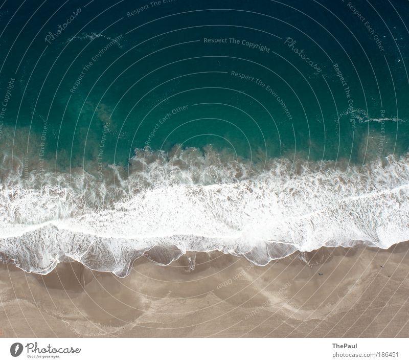 Strömungsdynamik Natur Wasser Meer Pazifik außergewöhnlich blau braun Leben Chile Iquique Gleitschirmfliegen Farbfoto Gedeckte Farben Außenaufnahme Luftaufnahme