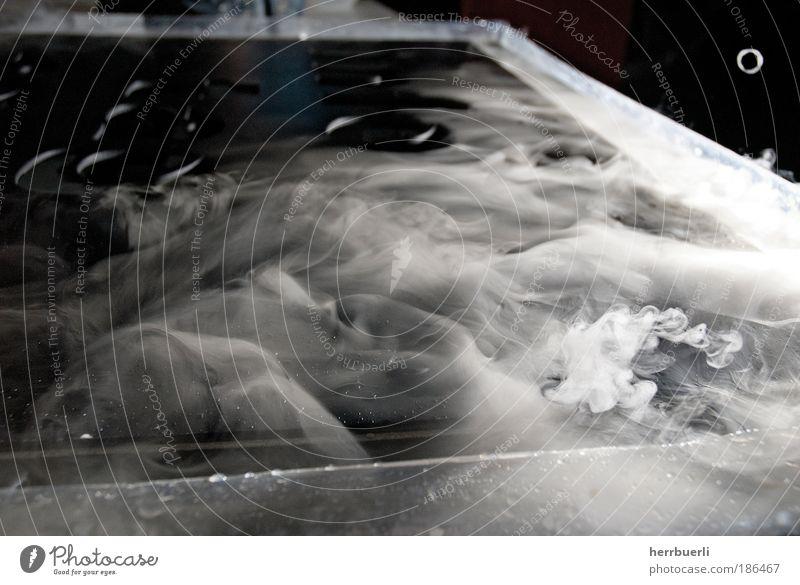 Trockeneis Watte Duft ästhetisch außergewöhnlich Coolness dunkel Flüssigkeit blau schwarz weiß Rauch Wasserdampf Experiment Studio Schwarzweiss Luft Nebel