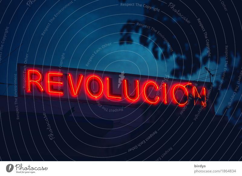 Die ... braucht würdige Nachfolger blau Baum rot Freiheit Zusammensein leuchten frei Schriftzeichen Erfolg Zeichen historisch Wandel & Veränderung Sehnsucht