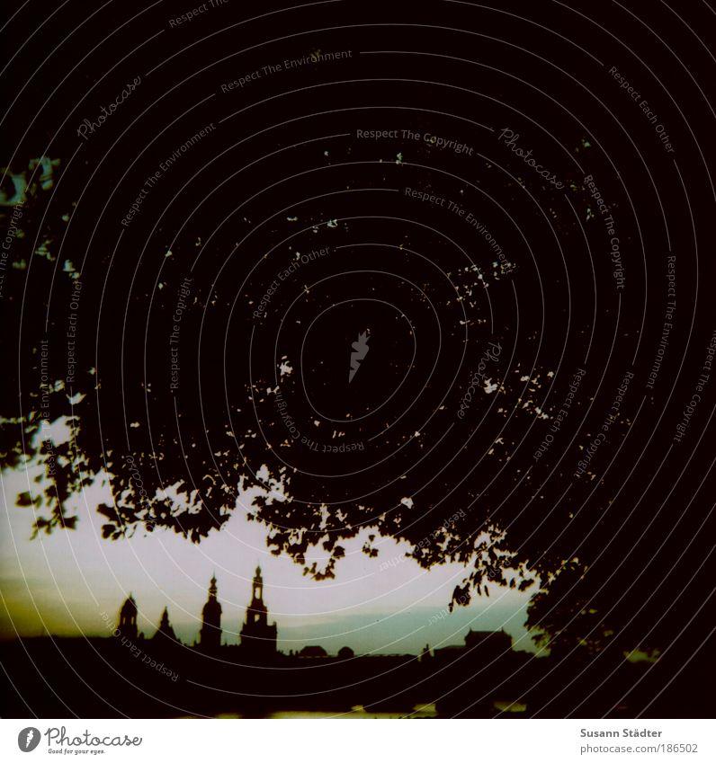 One Love Tourismus Sightseeing Städtereise Gemälde Kultur Natur Baum Blatt Dresden Stadtzentrum Fußgängerzone Skyline Hochhaus Kirche Brücke Bauwerk Architektur