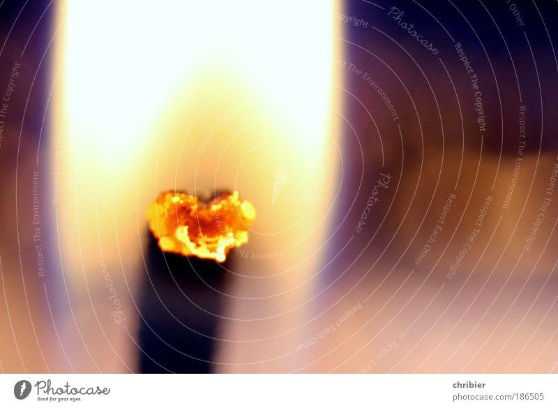 Advent. Mit Herz! Weihnachten & Advent ruhig Erholung Wärme hell Trauer Kerze Dekoration & Verzierung leuchten nah heiß brennen glühen Kerzendocht