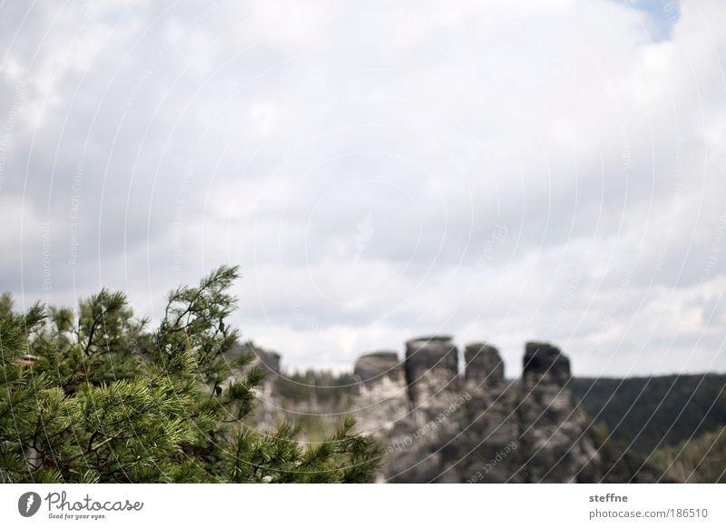 steinalt Natur alt Wolken Berge u. Gebirge Landschaft Umwelt Felsen Schlucht Sächsische Schweiz Elbsandsteingebirge Elbsandstein