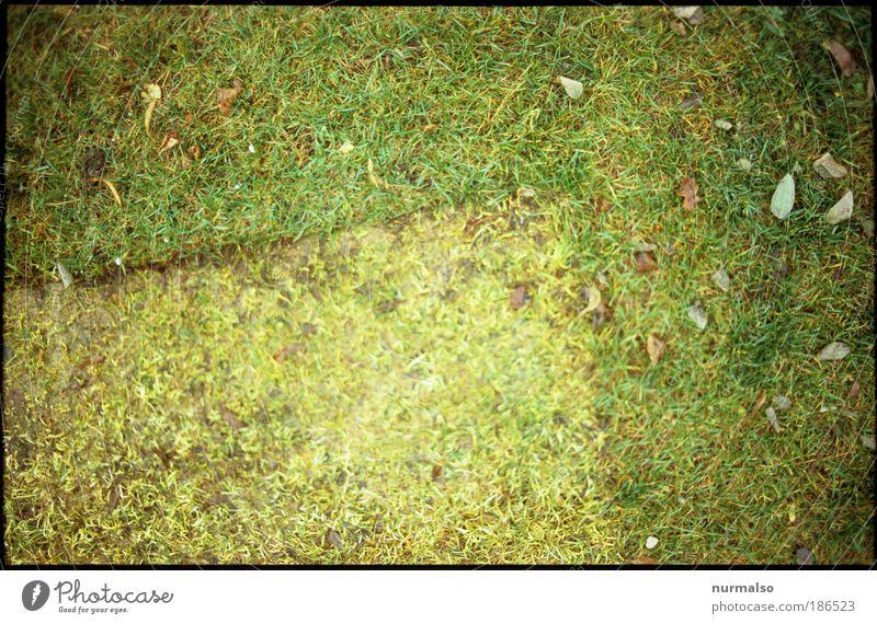 ich weis ooch nich 2 Natur Umwelt Gras Park Kunst lustig Freizeit & Hobby Kultur einfach Zeichen entdecken Langeweile Gewicht Inspiration Furche Container