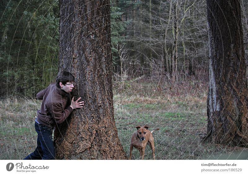 Räuber und Schandarm Mensch Natur Jugendliche grün blau Tier Holz Hund Stimmung braun Angst wandern gehen maskulin Umwelt Ausflug