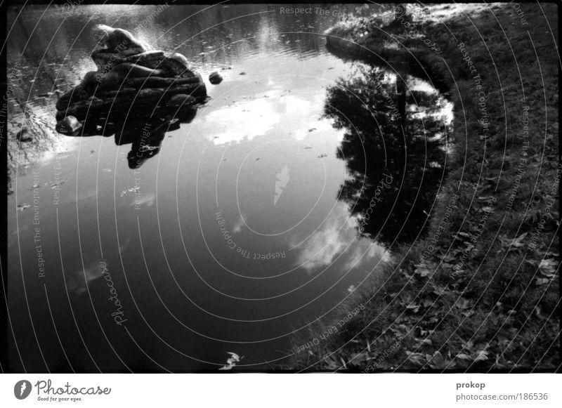 Der Hirte der Karpfen Umwelt Natur Landschaft Pflanze Wasser Himmel Wolken Schönes Wetter Baum Gras Park Seeufer liegen alt Denkmal Teich Teichufer
