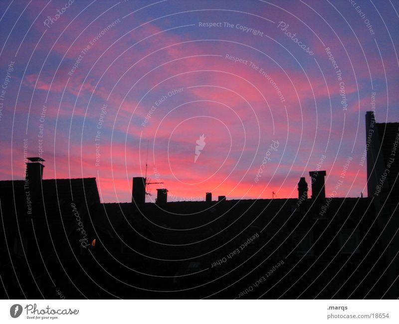 Dawn blau schön Haus dunkel schwarz rosa Häusliches Leben mehrere Romantik Abenddämmerung Schornstein Antenne Wolkenhimmel Wolkenformation leuchtende Farben Grossstadtromantik