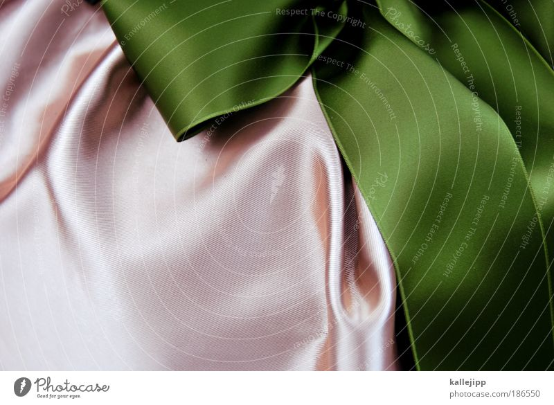 können sie es bitte gleich als geschenk einpacken?! Weihnachten & Advent grün Stil Lifestyle Feste & Feiern rosa Design elegant Dekoration & Verzierung Geschenk geheimnisvoll Kitsch Falte Überraschung Tag Valentinstag