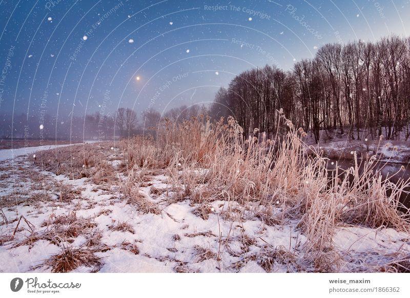 Magic Winter Weihnachtsnacht. Schneefall Szene auf einem Fluss Baum Landschaft Wiese natürlich Gras Nebel Eis Abenteuer Frost Jahreszeiten gefroren Mond