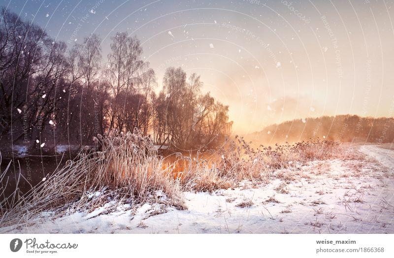 Nebelhafte Dämmerung des Winters auf dem Fluss. Schneeflocken, Schneefall. Himmel Natur Ferien & Urlaub & Reisen weiß Baum Landschaft Ferne Wald Wiese natürlich