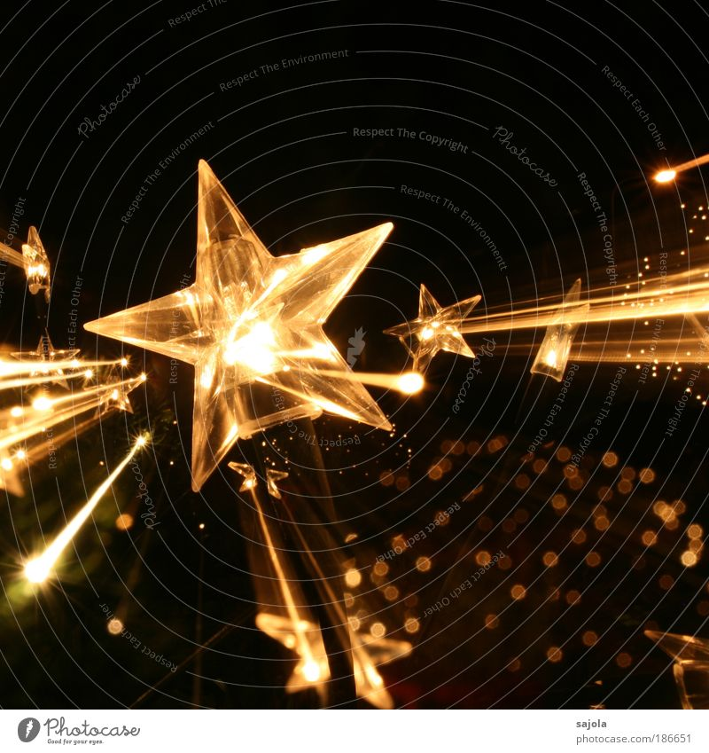 stars on the way Dekoration & Verzierung ästhetisch gold schwarz Vorfreude Stern (Symbol) Licht Lichtpunkt Weihnachten & Advent Weihnachtsdekoration