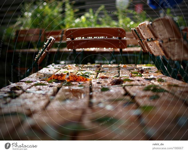 Regen im Biergarten ist.... Sommer Wolken Traurigkeit Garten Feste & Feiern Park Ernährung leer nass Bayern Bioprodukte Wut München Jahrmarkt Zoo