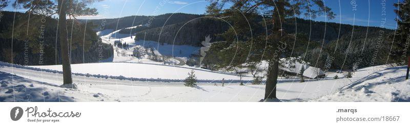 Winter im Schwarzwald Baum Tal Aussicht kalt Panorama (Aussicht) Hügel Monokultur ruhig Einsamkeit Weitwinkel Berge u. Gebirge Schnee Eis Straße marqs groß