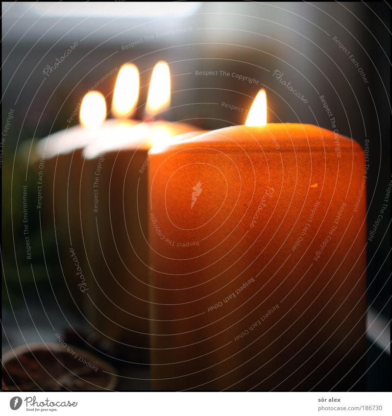 Das Warten hat bald ein Ende Weihnachten & Advent Einsamkeit gelb Gefühle Glück Stimmung gold Hoffnung Kunstlicht Romantik Kerze Reihe positiv Vorfreude