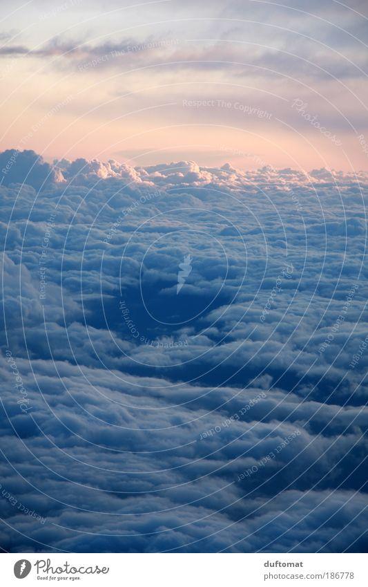 watteweich aprilfrisch Himmel blau Ferien & Urlaub & Reisen Wolken Ferne Herbst Bewegung Freiheit Luft Zufriedenheit rosa Flugzeug Wetter Luftverkehr