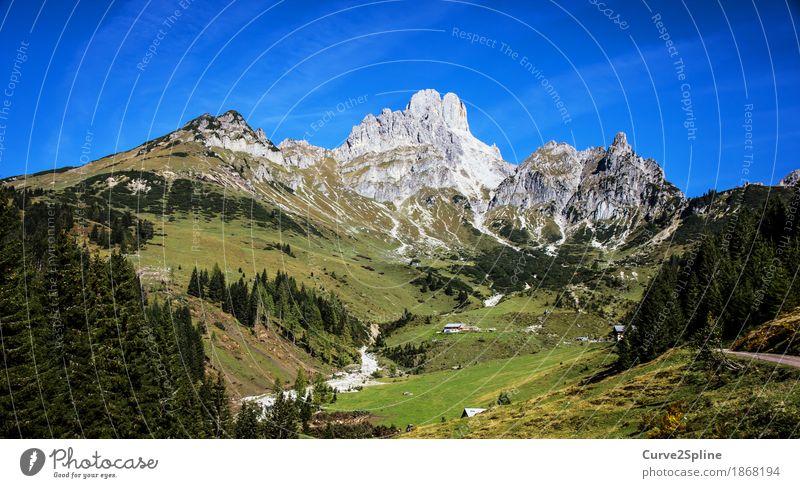 Berg & Tal Natur Landschaft Urelemente Wasser Himmel Sommer Wiese Feld Wald Hügel Felsen Alpen Berge u. Gebirge Gipfel Bach Fluss natürlich Österreich Hofpürgel