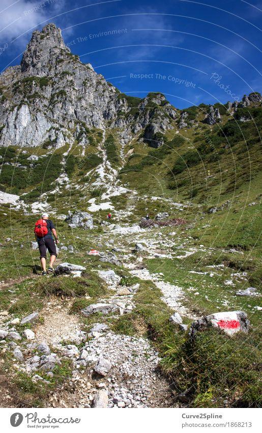 Zustieg Mensch Natur Mann Sommer Landschaft rot Wald Berge u. Gebirge Erwachsene Wege & Pfade Wiese Sport Felsen maskulin Freizeit & Hobby Feld