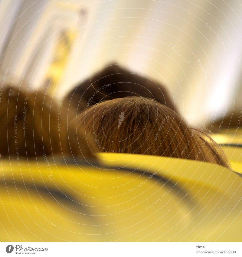 Wolkenkratzer Kopf Mensch Haare & Frisuren Sitzgelegenheit Luftverkehr Flugzeug Ferien & Urlaub & Reisen Reisefotografie Himmel Kabine gelb eingequetscht eng