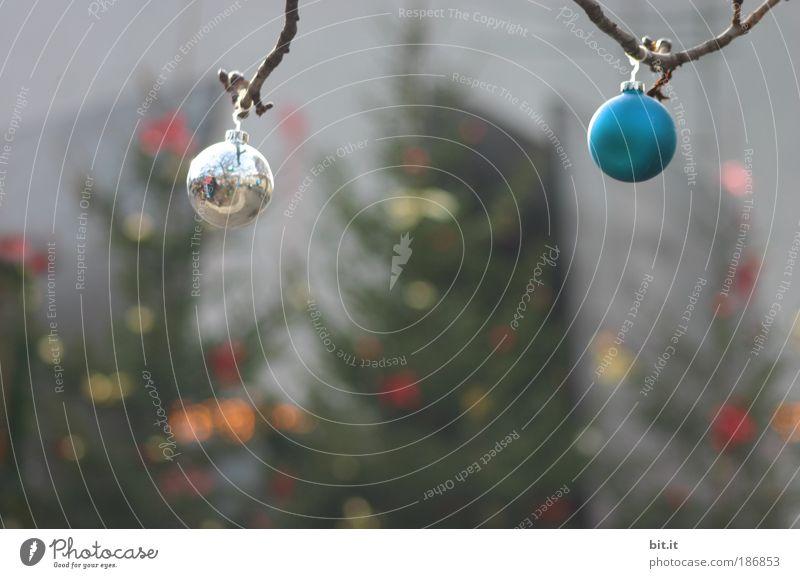 PHOTOGRAF IM 100% AUSSCHNITT??? Weihnachten & Advent blau Winter Stimmung Feste & Feiern glänzend Design leuchten Kitsch Weihnachtsbaum Kugel Tanne hängen silber Christbaumkugel