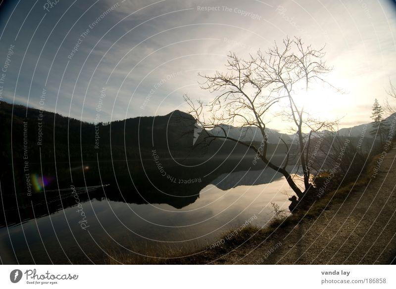 Altaussee II Umwelt Natur Landschaft Wasser Himmel Sonne Sonnenlicht Herbst Winter Schönes Wetter Pflanze Baum Berge u. Gebirge Seeufer schön trist