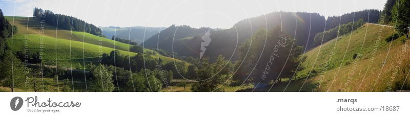 Frisch und Saftig grün Sommer Wiese Berge u. Gebirge groß Aussicht Panorama (Bildformat) Tal Baden-Württemberg Schwarzwald