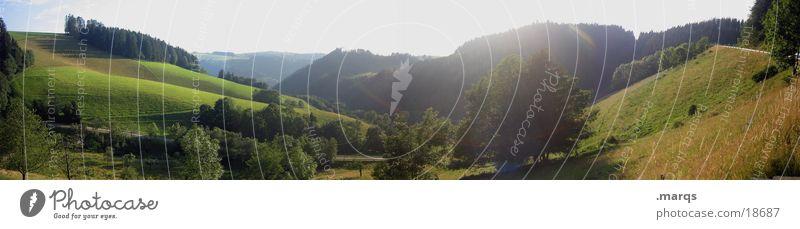 Frisch und Saftig Panorama (Aussicht) Wiese grün Sommer Schwarzwald Berge u. Gebirge Tal Spirzen groß Panorama (Bildformat)