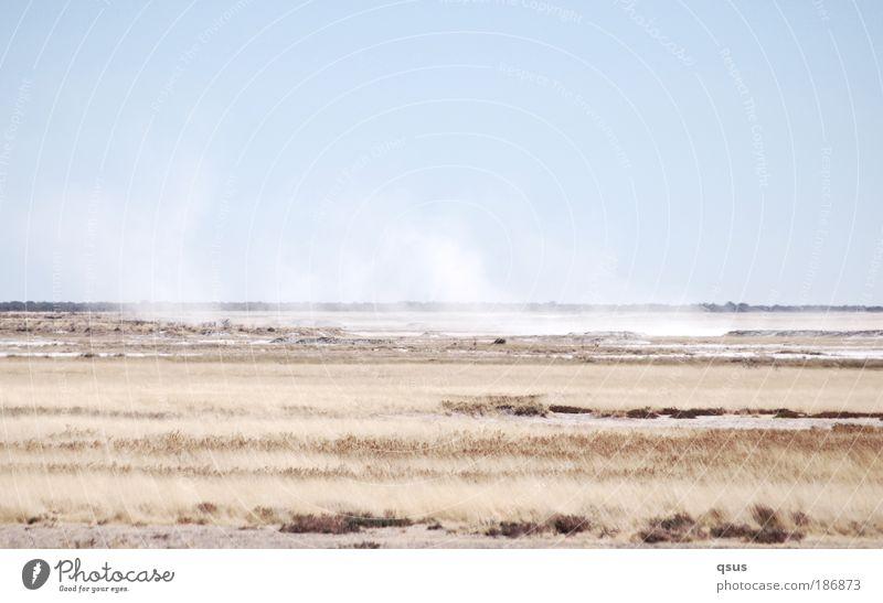Salzsturm Ferien & Urlaub & Reisen Abenteuer Ferne Freiheit Landschaft Erde Wolkenloser Himmel Horizont Klima Sturm Wärme Dürre Gras Sträucher Wüste Ebene