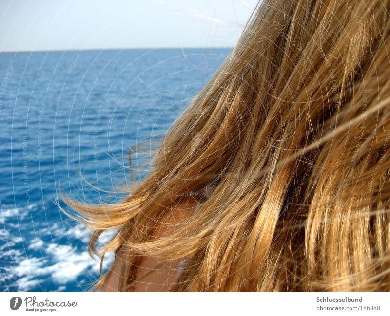 Red Sea Mensch Jugendliche Wasser Himmel Sonne Meer Sommer Ferien & Urlaub & Reisen feminin Freiheit Haare & Frisuren Kopf Zufriedenheit Erde Wellen
