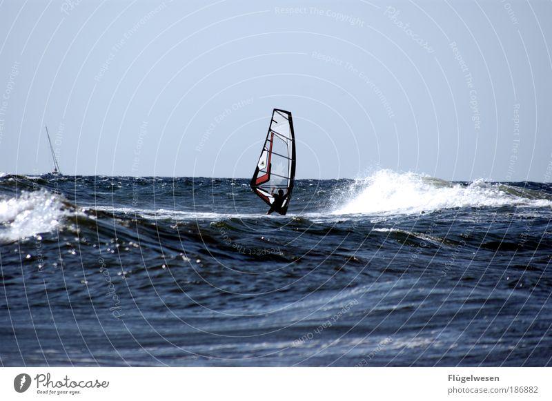 Who is this? Lifestyle Freizeit & Hobby Spielen Ferien & Urlaub & Reisen Tourismus Wassersport Segeln tauchen Wellen Küste Seeufer Nordsee Ostsee atmen Jagd