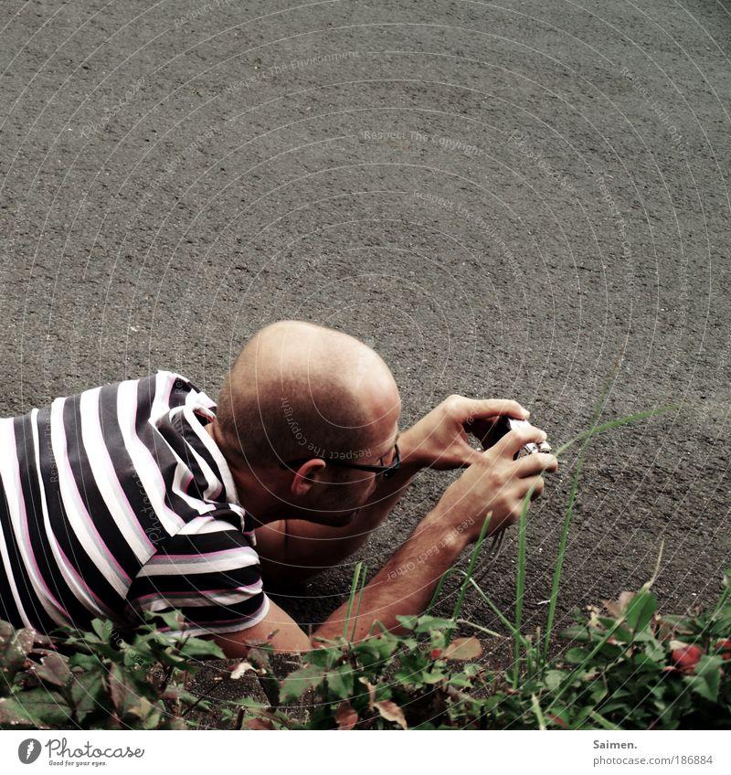 in seiner eigenen Welt Mensch Mann ruhig Straße Erwachsene maskulin Suche T-Shirt Sträucher liegen Freizeit & Hobby Gelassenheit Konzentration entdecken Glatze Fotograf