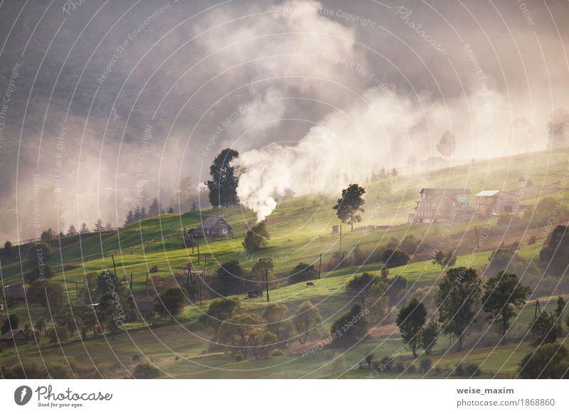 Natur Ferien & Urlaub & Reisen Pflanze Farbe grün weiß Baum Landschaft Haus Ferne Wald Berge u. Gebirge Umwelt Herbst natürlich Gras