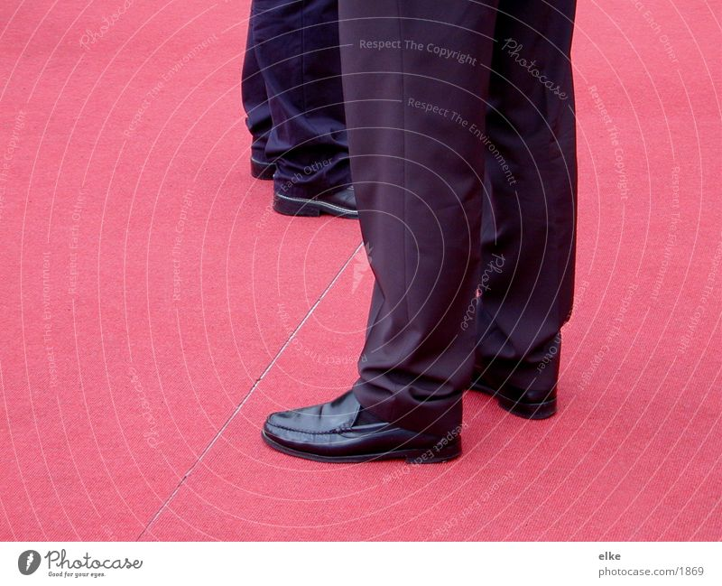 der rote teppich Mensch Teppich Roter Teppich