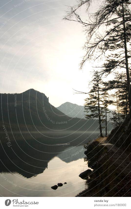 Altaussee III Natur Wasser Himmel Baum Sonne Winter ruhig Herbst Berge u. Gebirge Wege & Pfade See Umwelt Felsen Alpen Tanne Gipfel