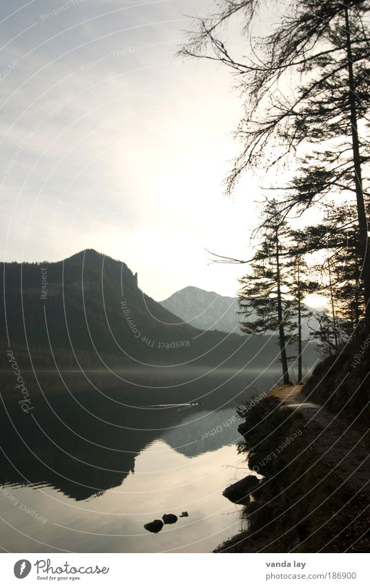 Altaussee III Umwelt Natur Urelemente Wasser Himmel Sonne Herbst Winter Baum Felsen Alpen Berge u. Gebirge Gipfel Seeufer Wege & Pfade ruhig Salzkammergut
